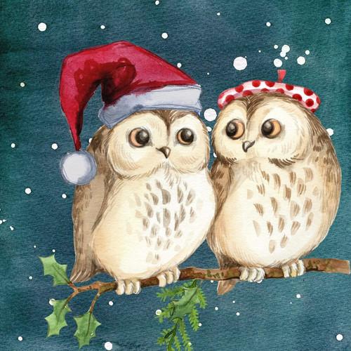 5D Diamond Painting Two Christmas Owls kit