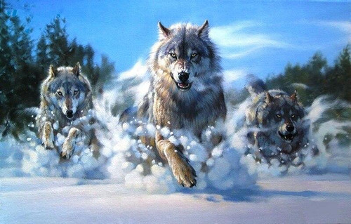 5D Diamond Painting Wolves Running in the Snow Kit