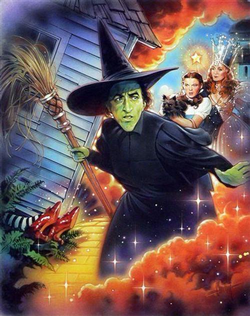 5D Diamond Painting Wicked Witch Broom Kit