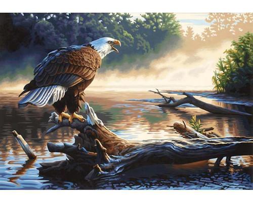5D Diamond Painting Eagle on a Log Kit