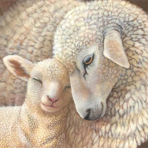 5D Diamond Painting Mother Sheep and Her Lamb Kit