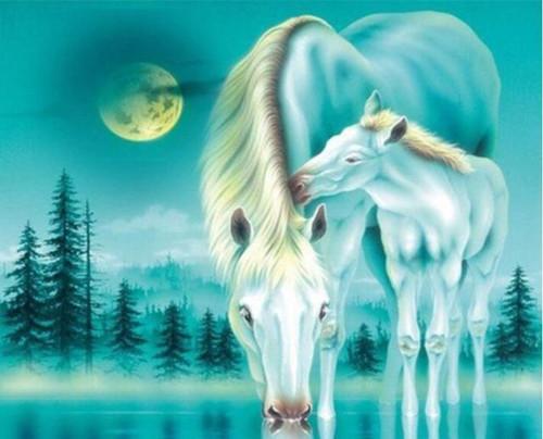 5D Diamond Painting Turquoise Hue Horses Kit