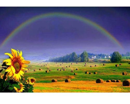 5D Diamond Painting Rainbow Fields Kit