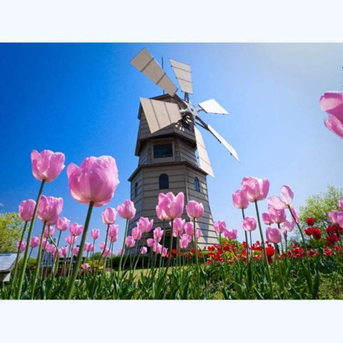 5D Diamond Painting Pink Tulip Windmill Kit