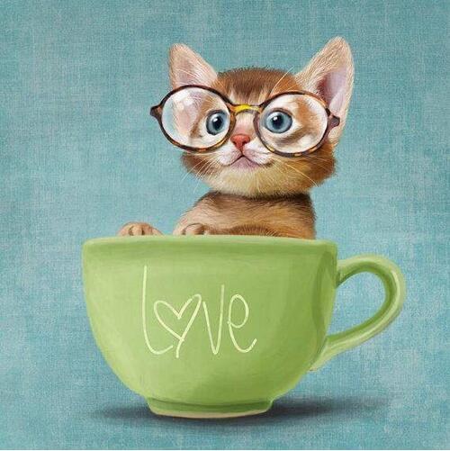 5D Diamond Painting Cup of Love Kitten Kit