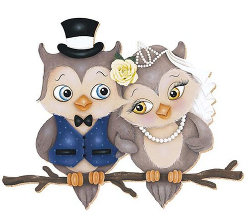 5D Diamond Painting Newly Wed Owls Kit