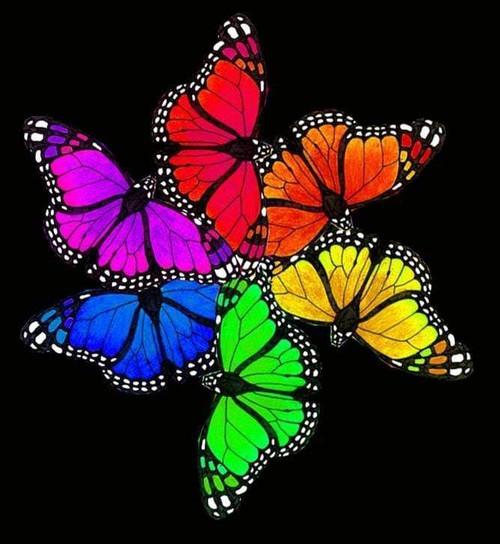 5D Diamond Painting Six Rainbow Butterflies Kit