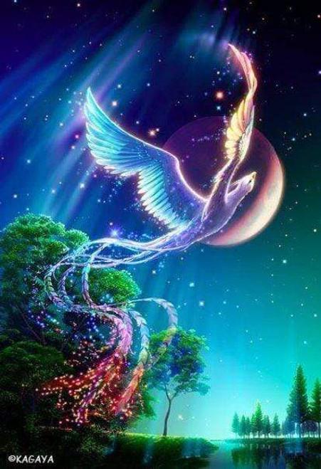 5D Diamond Painting Colorful Magical Phoenix Kit