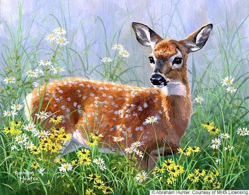 5D Diamond Painting Deer in the Wild Flowers Kit