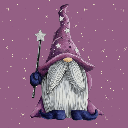 5D Diamond Painting Wizard Gnome Kit