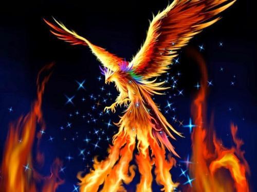 5D Diamond Painting Fire Phoenix Starry Sky Kit