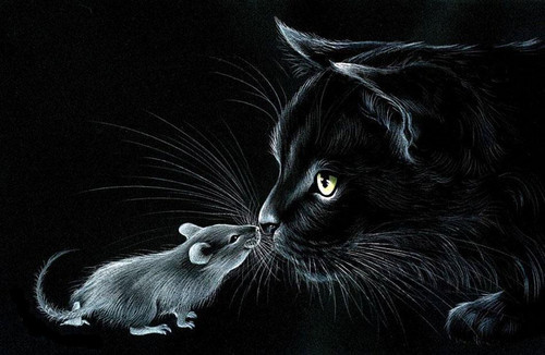 5D Diamond Painting Mouse and Cat Kit