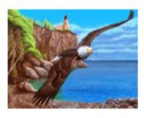 5D Diamond Painting Eagle by the Lighthouse Kit