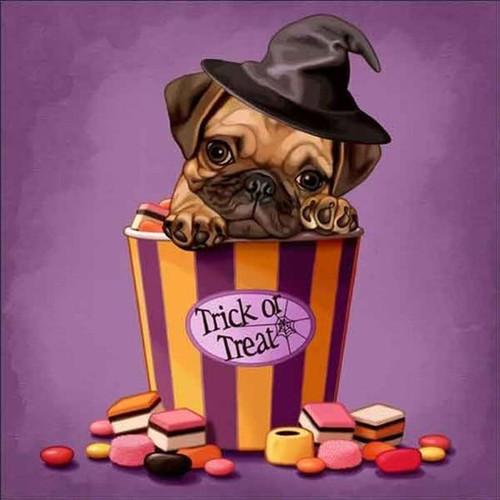 5D Diamond painting Trick or Treat Pug Puppy Kit