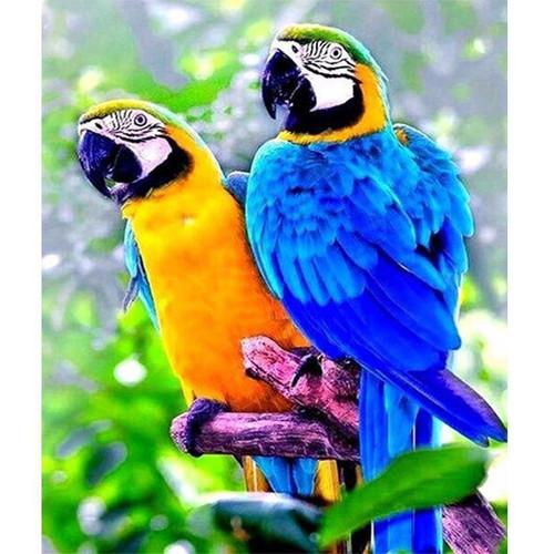 5D Diamond Painting Two Parrots Kit