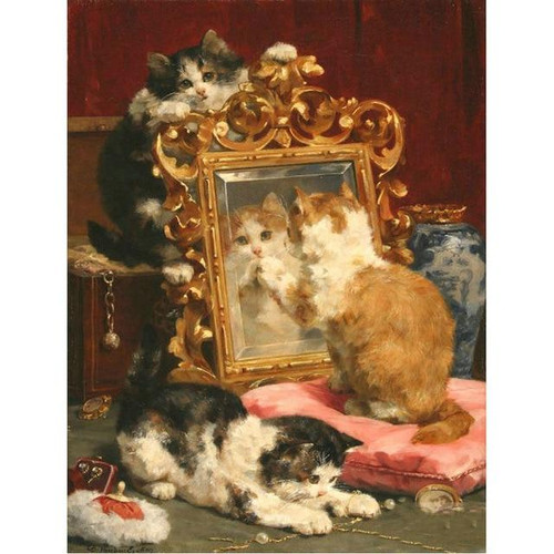 5D Diamond Painting Cats by the Mirror Kit