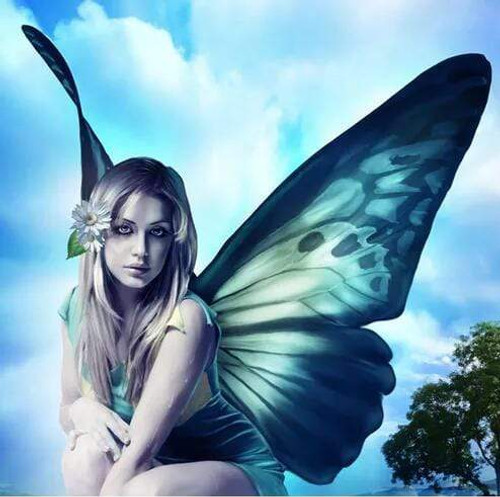 5D Diamond Painting Butterfly Wing Girl Kit
