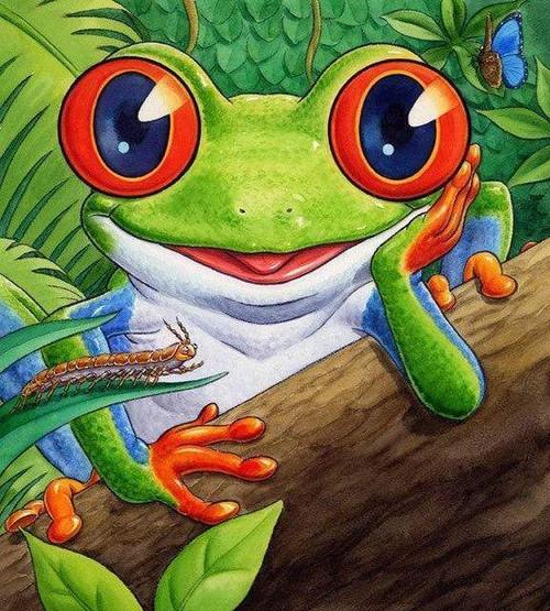 5D Diamond Painting Orange Eyed Frog Kit
