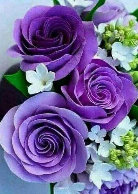 5D Diamond Painting Three Purple Roses Kit