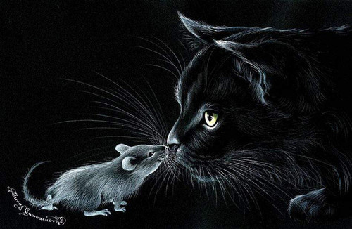 5D Diamond Painting Mouse and Cat Kit 1