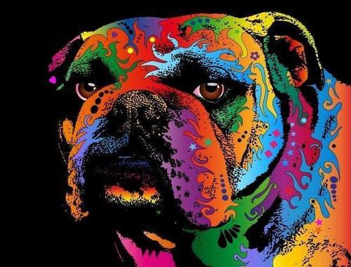 5D Diamond Painting Abstract Bull Dog Kit