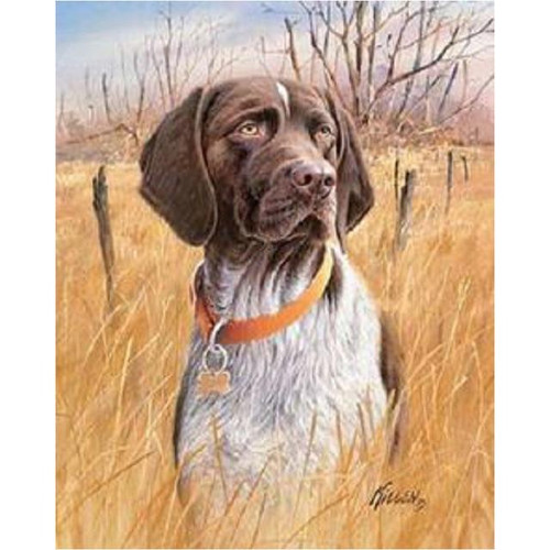 5D Diamond Painting Dog in the Tall Grass Kit