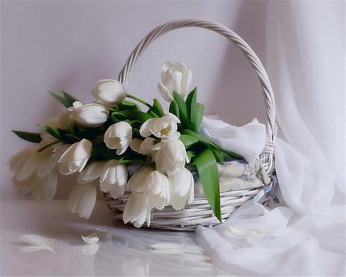 5D Diamond Painting Basket of White Tulips Kit