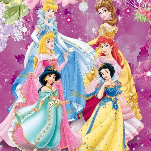 5D Diamond Painting Disney Princess Collection Kit