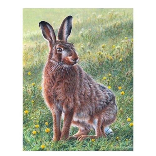 5D Diamond Painting Brown Rabbit in the Grass Kit