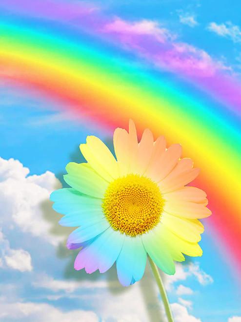 5D Diamond Painting Rainbow Daisy kit