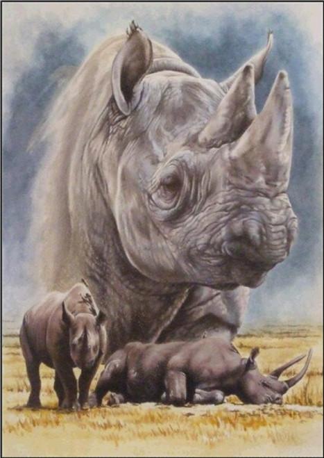 5D Diamond Painting Rhino Collage Kit
