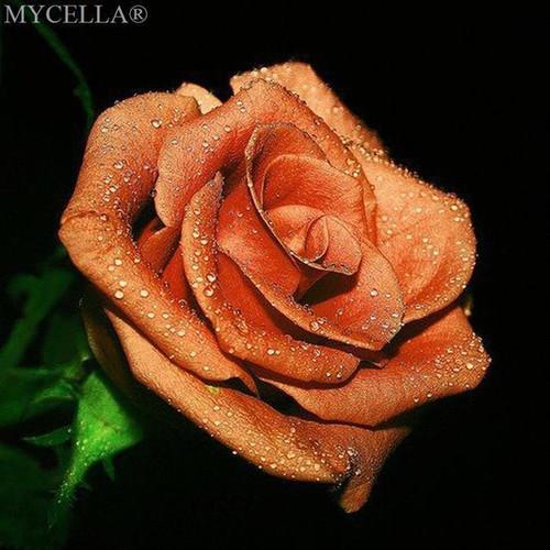 5D Diamond Painting Rose Kit