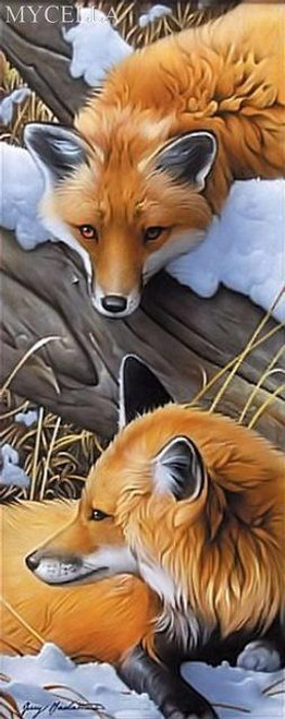 5D Diamond Painting Foxes Kit