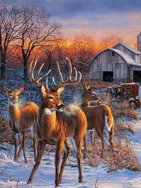 5D Diamond Painting Deer by the Barn Kit