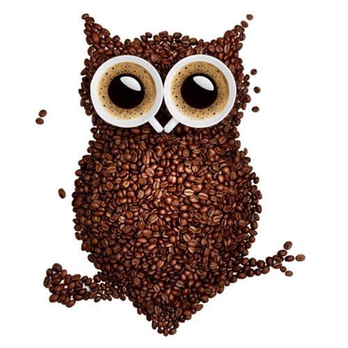 5D Diamond Painting Coffee Bean Owl Kit