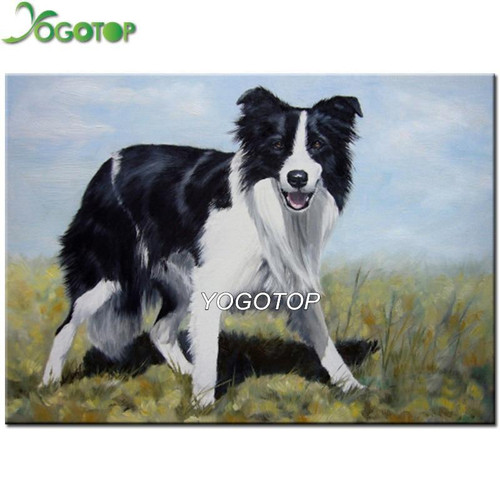 5D Diamond Painting Border Collie in the Meadow Kit