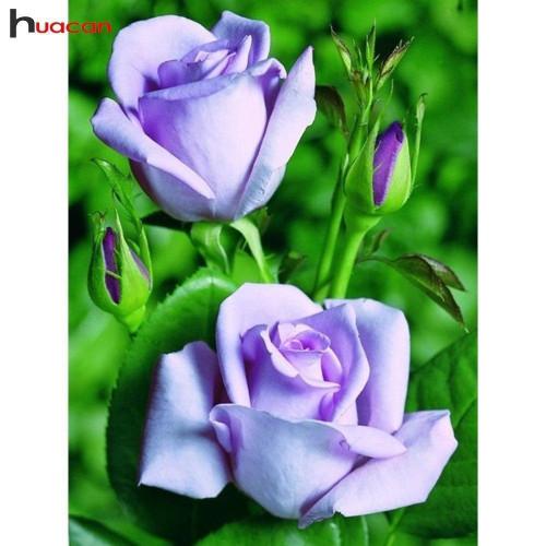 5D Diamond Painting Two Lavender Roses Kit