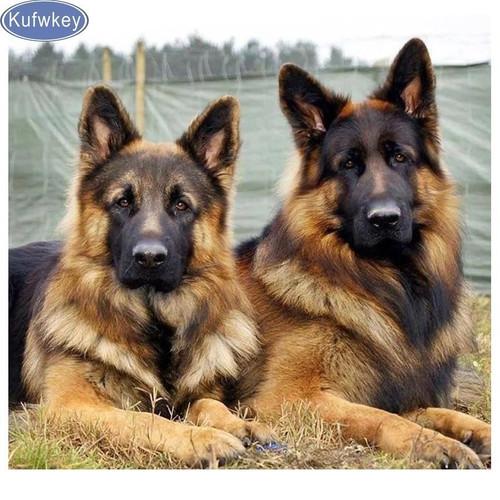 5D Diamond Painting Two German Shepherds Kit