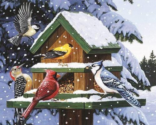 5D Diamond Painting Snowy Bird House Kit