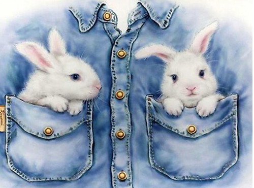 5D Diamond Painting Two Bunnies in Pockets Kit