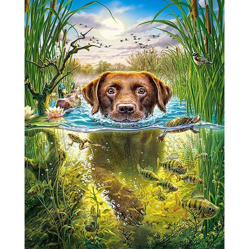 5D Diamond Painting Hunting Dog in the Water Kit