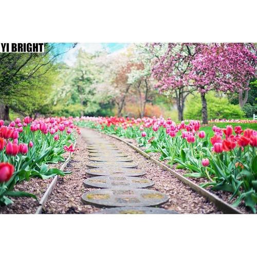 5D Diamond Painting Tulips Along the Path Kit