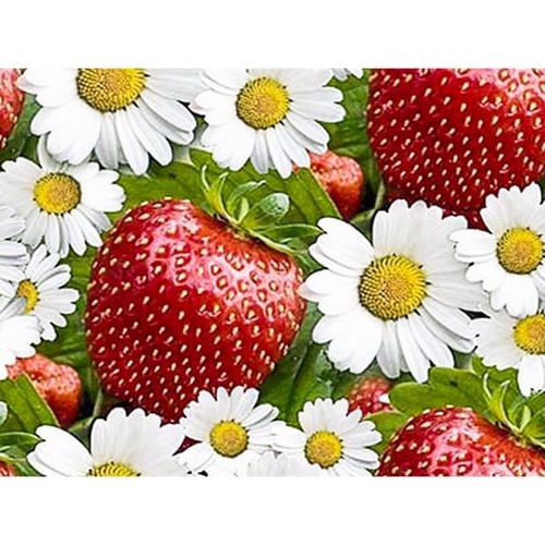 5D Diamond Painting Strawberries and Daisies Kit