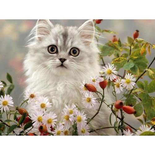 5D Diamond Painting White Kitten in the Daisies Kit