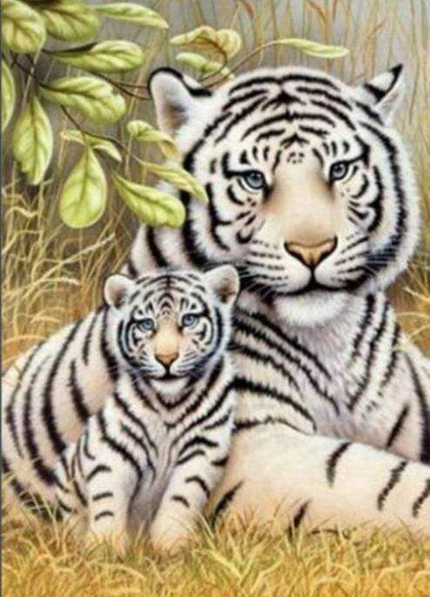 5D Diamond Painting Two Tigers in the Grass Kit