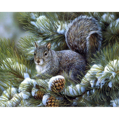 5D Diamond Painting Squirrel and Pine Cones Kit