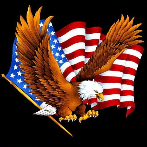 5D Diamond Painting American Flag and the Eagle Kit