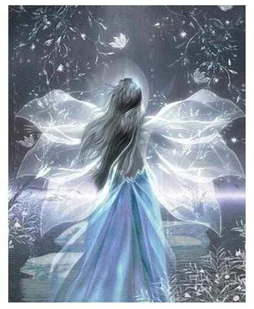 5D Diamond Painting Shimmering Fairy Wings Kit