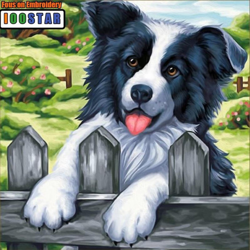 5D Diamond Painting Border Collie at the Fence Kit