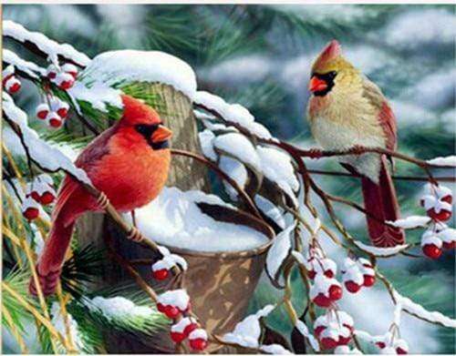 5D Diamond Painting Berries and Birds in the Snow Kit